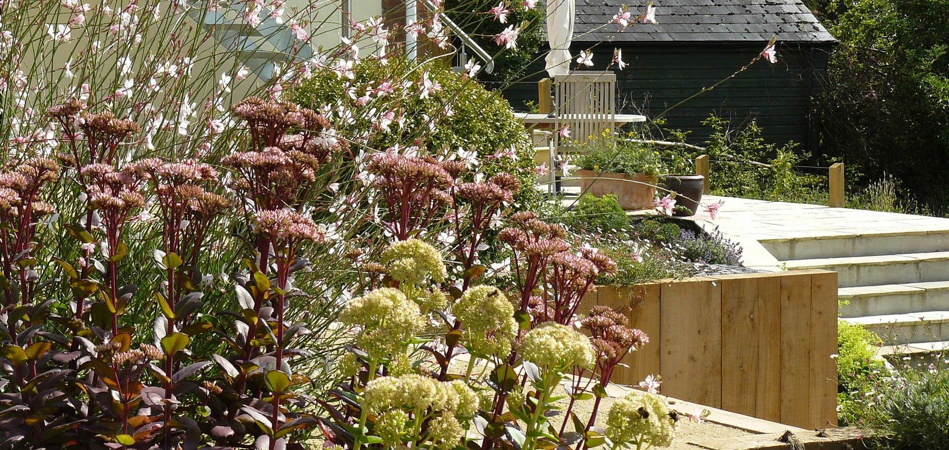 A productive terraced garden in Devon